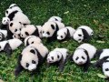 Pandas' groupby explained in detail